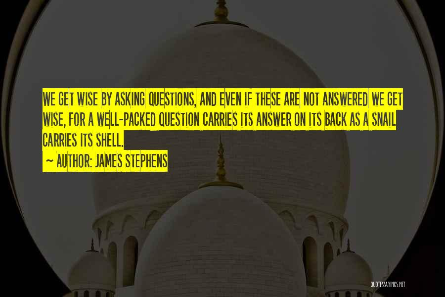 Questions Not Answered Quotes By James Stephens