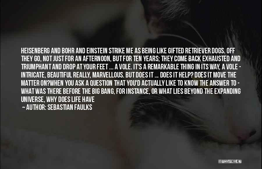 Questions Not Answered Quotes By Sebastian Faulks