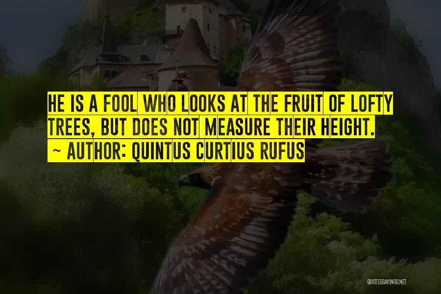 Quintus Curtius Rufus Quotes 2004286
