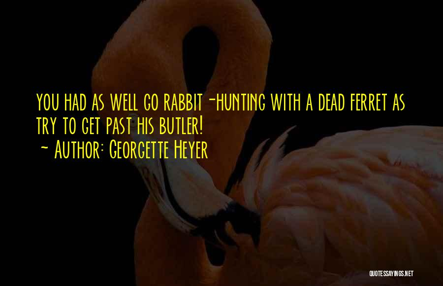 Rabbit Hunting Quotes By Georgette Heyer