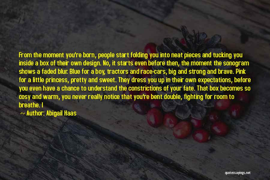 Race Cars Quotes By Abigail Haas