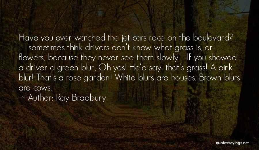 Race Cars Quotes By Ray Bradbury