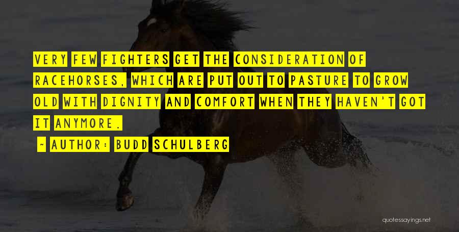 Racehorses Quotes By Budd Schulberg
