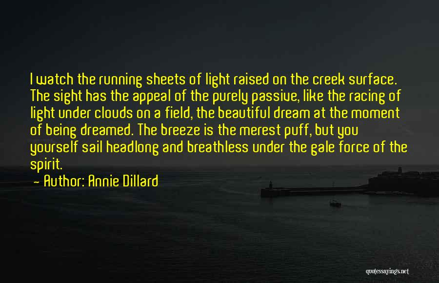 Racing Quotes By Annie Dillard