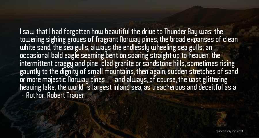 Raging Sea Quotes By Robert Traver