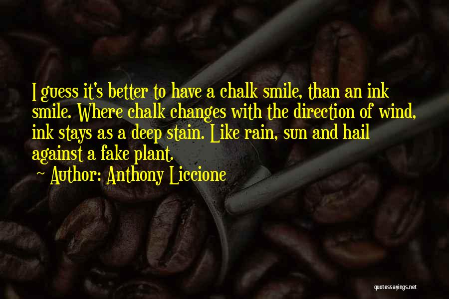 Rain And Sadness Quotes By Anthony Liccione