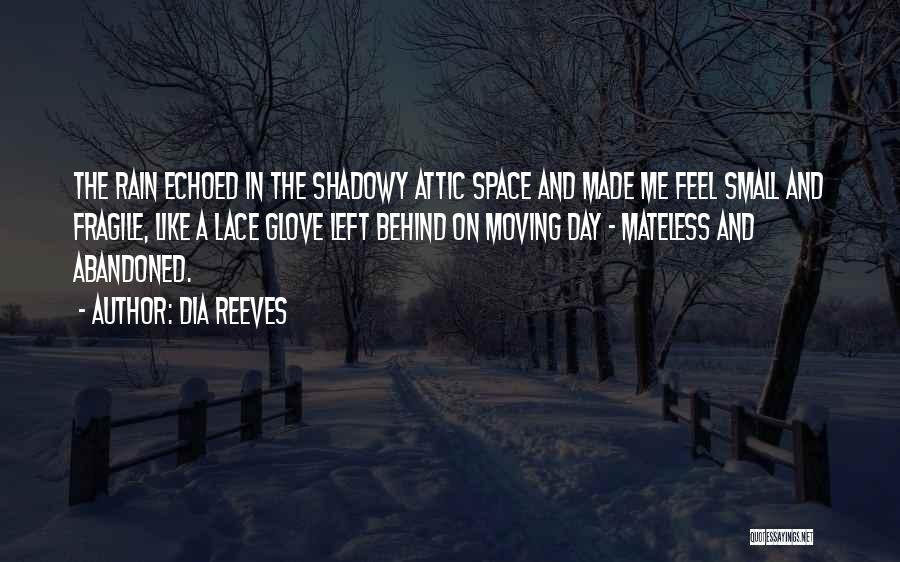 Rain And Sadness Quotes By Dia Reeves