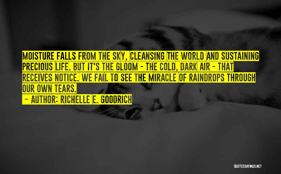 Rain And Sadness Quotes By Richelle E. Goodrich