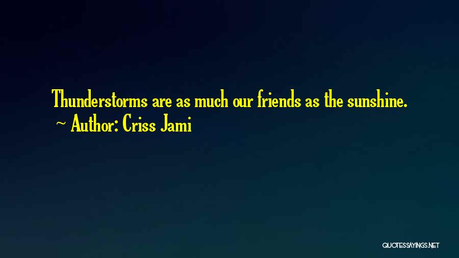 Rain And Thunderstorm Quotes By Criss Jami