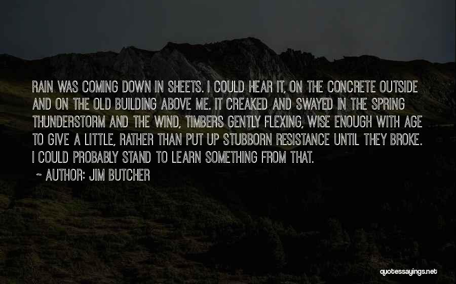 Rain And Thunderstorm Quotes By Jim Butcher