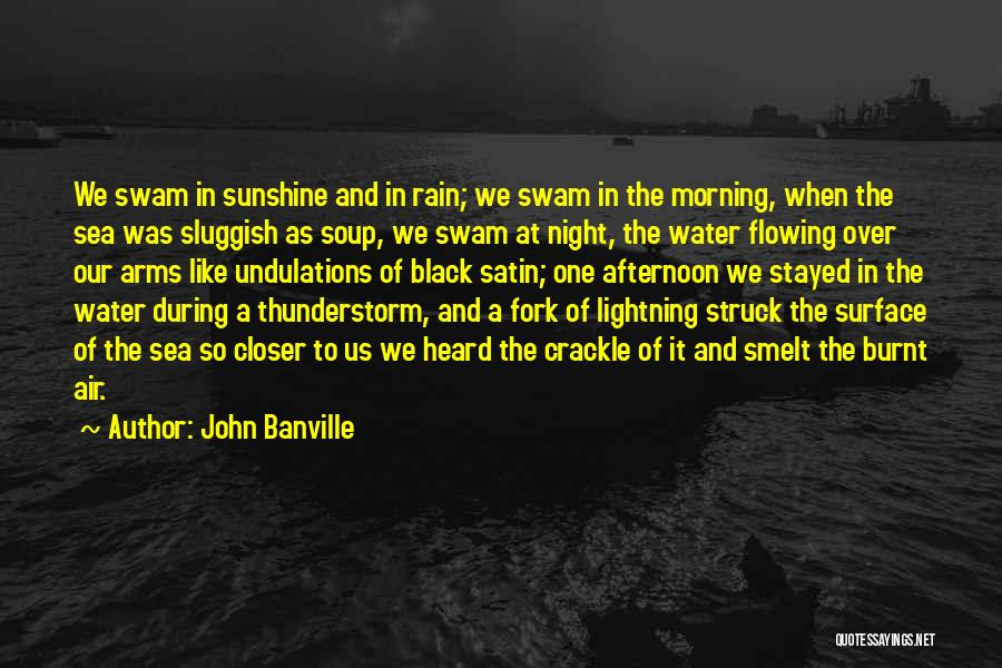 Rain And Thunderstorm Quotes By John Banville
