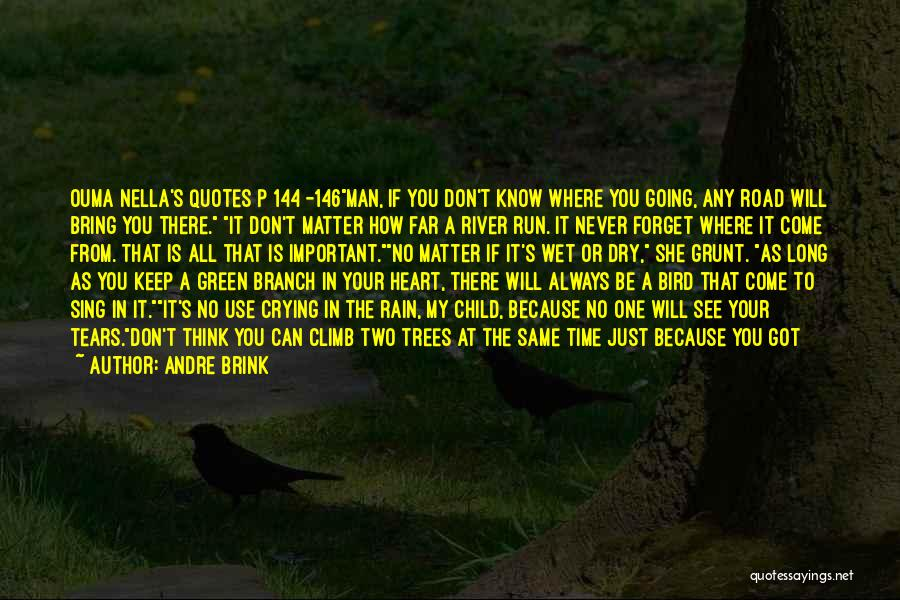 Rain And Trees Quotes By Andre Brink