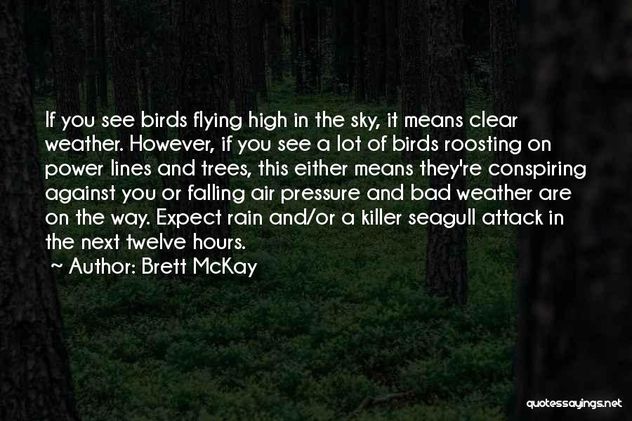Rain And Trees Quotes By Brett McKay
