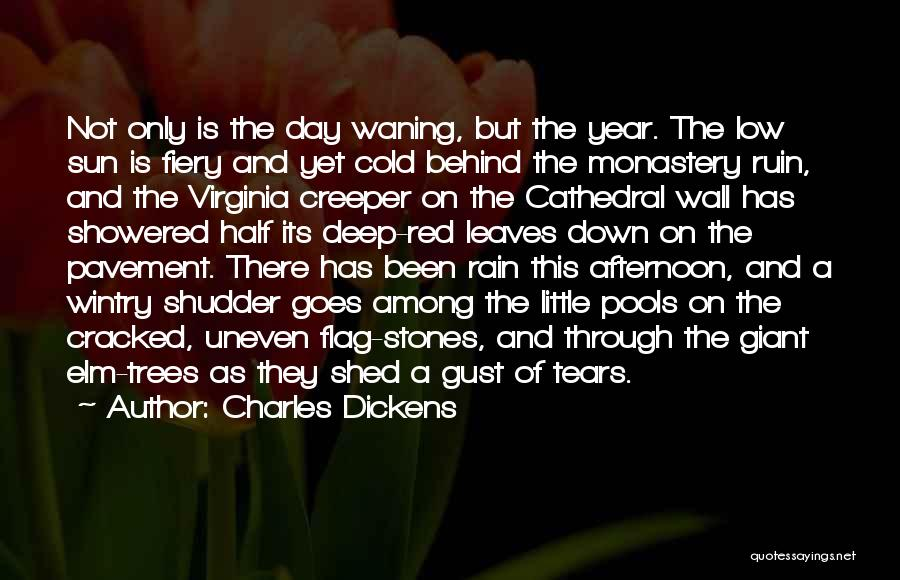 Rain And Trees Quotes By Charles Dickens