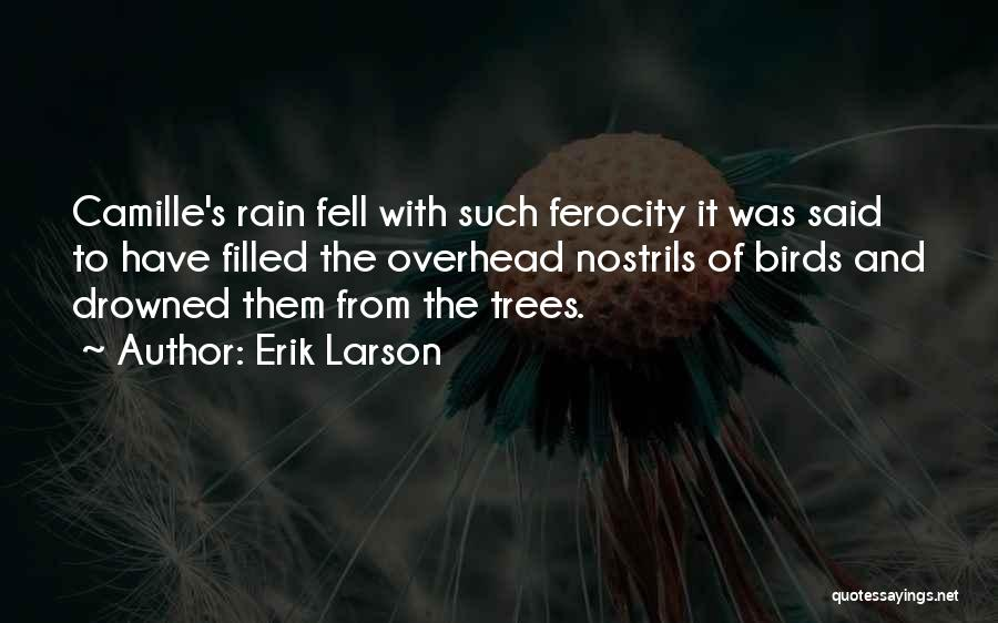 Rain And Trees Quotes By Erik Larson