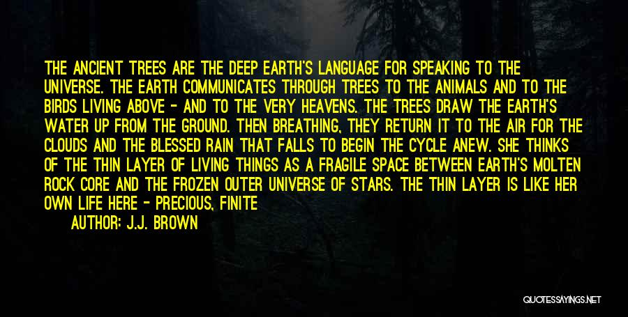 Rain And Trees Quotes By J.J. Brown