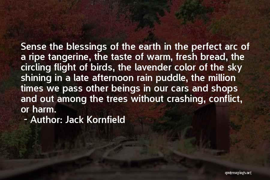 Rain And Trees Quotes By Jack Kornfield