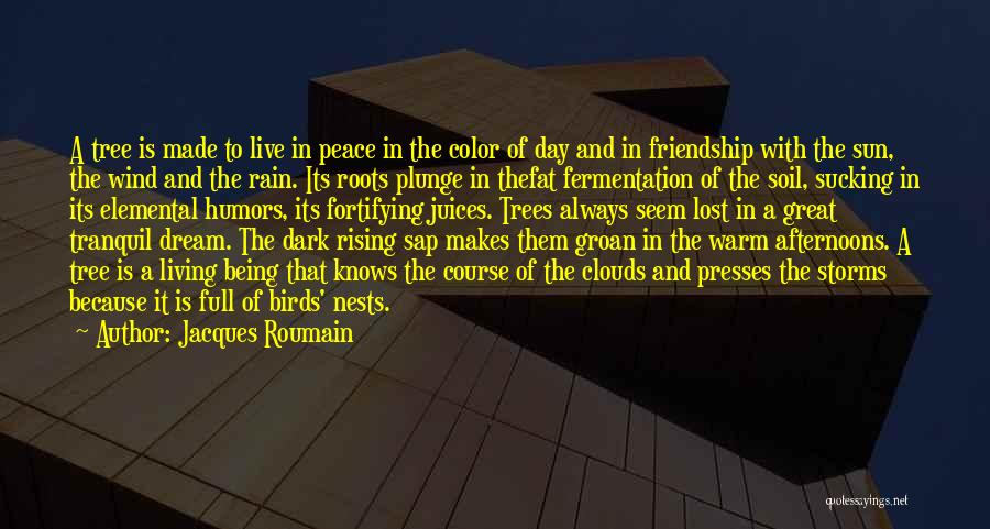 Rain And Trees Quotes By Jacques Roumain