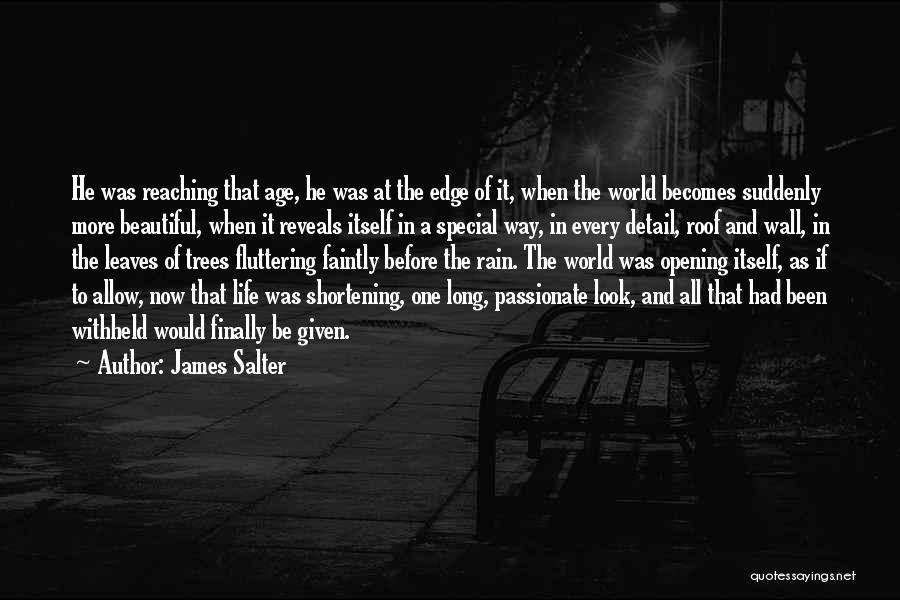 Rain And Trees Quotes By James Salter
