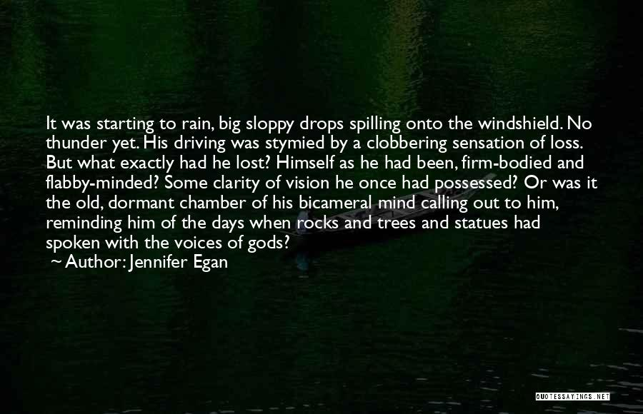 Rain And Trees Quotes By Jennifer Egan