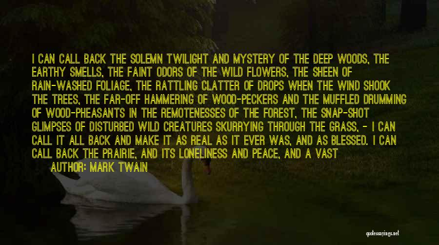 Rain And Trees Quotes By Mark Twain