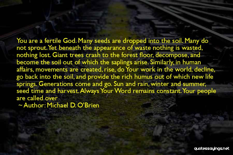 Rain And Trees Quotes By Michael D. O'Brien