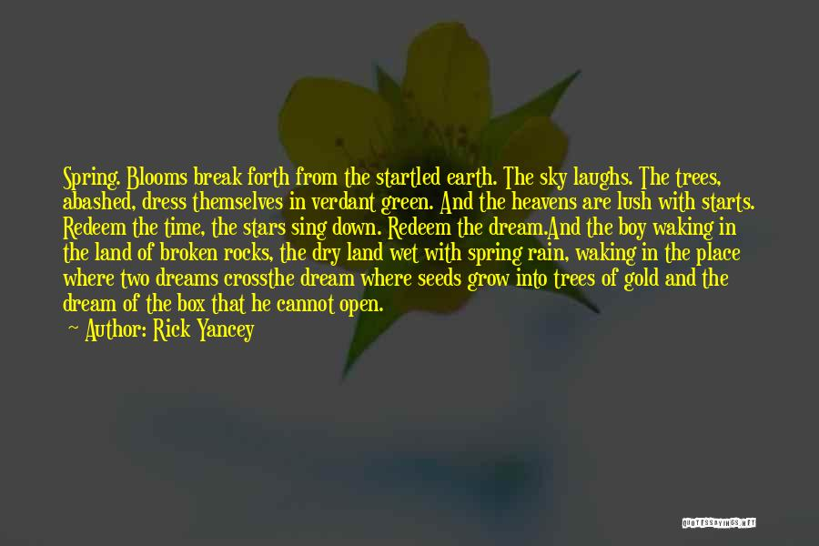 Rain And Trees Quotes By Rick Yancey
