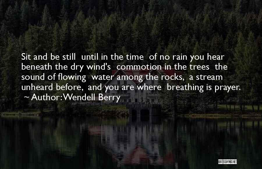 Rain And Trees Quotes By Wendell Berry