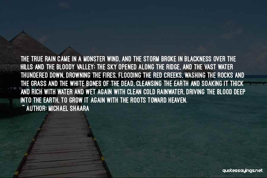Rain Cleansing Quotes By Michael Shaara