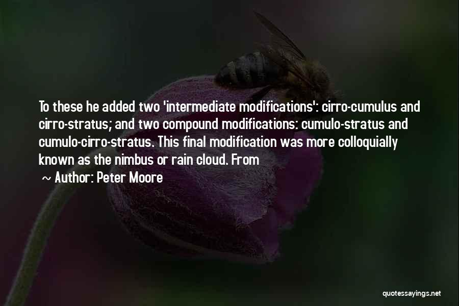 Rain Cloud Quotes By Peter Moore
