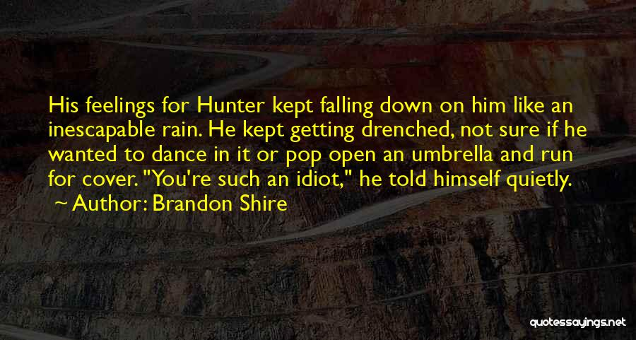 Rain Falling Down Quotes By Brandon Shire