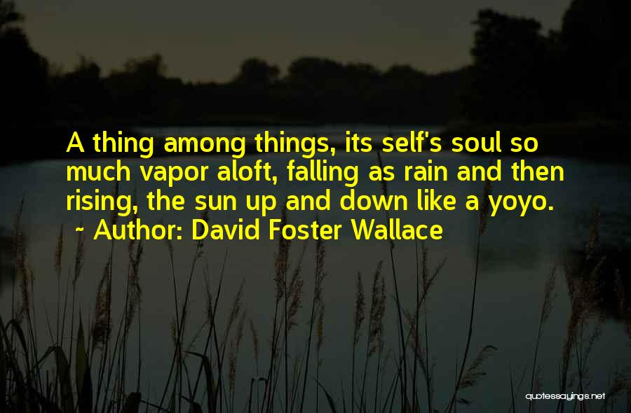 Rain Falling Down Quotes By David Foster Wallace