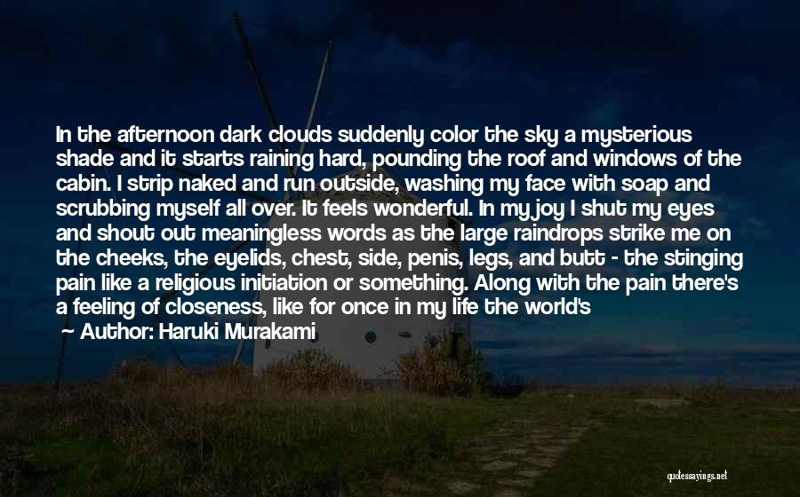 Rain Falling Down Quotes By Haruki Murakami