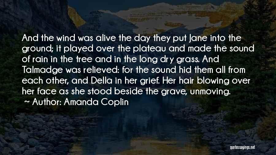 Rain In The Face Quotes By Amanda Coplin