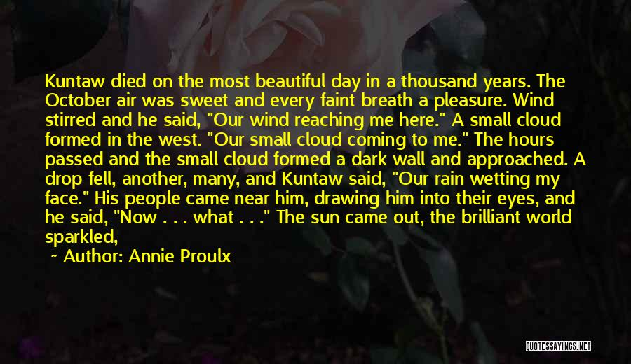 Rain In The Face Quotes By Annie Proulx