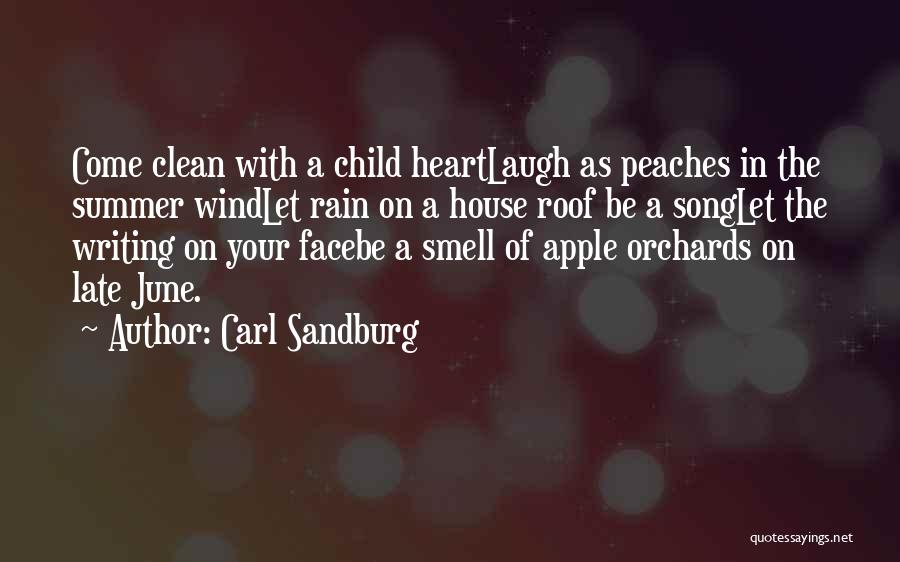 Rain In The Face Quotes By Carl Sandburg