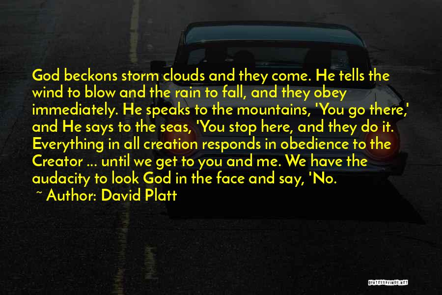 Rain In The Face Quotes By David Platt