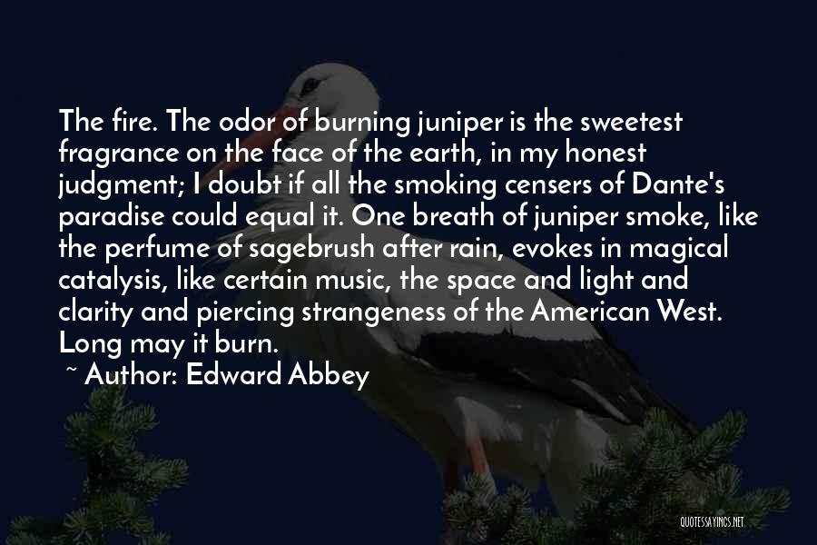 Rain In The Face Quotes By Edward Abbey