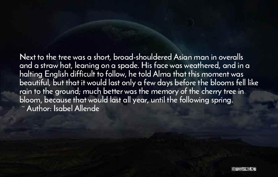 Rain In The Face Quotes By Isabel Allende