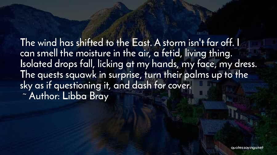 Rain In The Face Quotes By Libba Bray