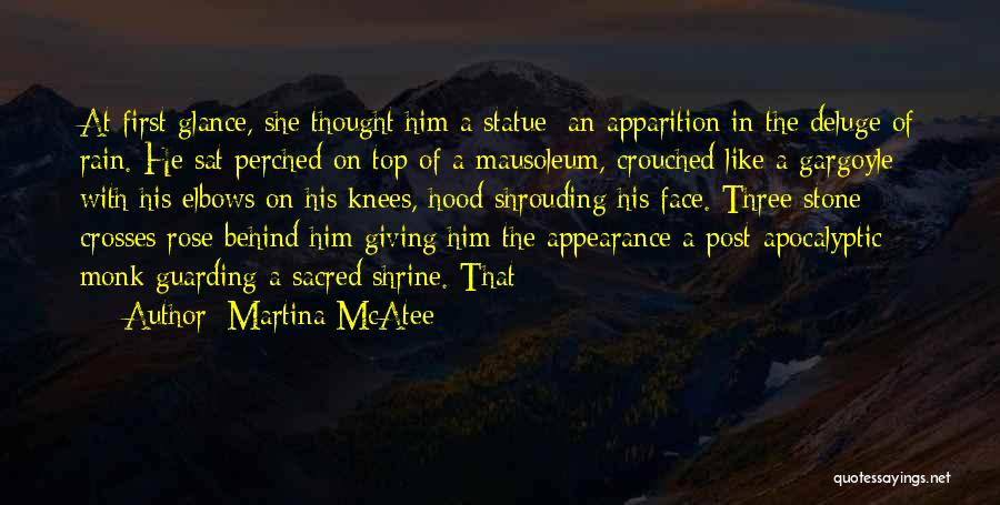 Rain In The Face Quotes By Martina McAtee