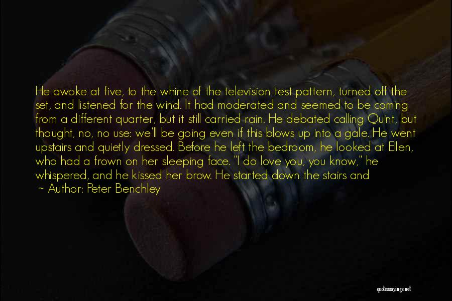 Rain In The Face Quotes By Peter Benchley