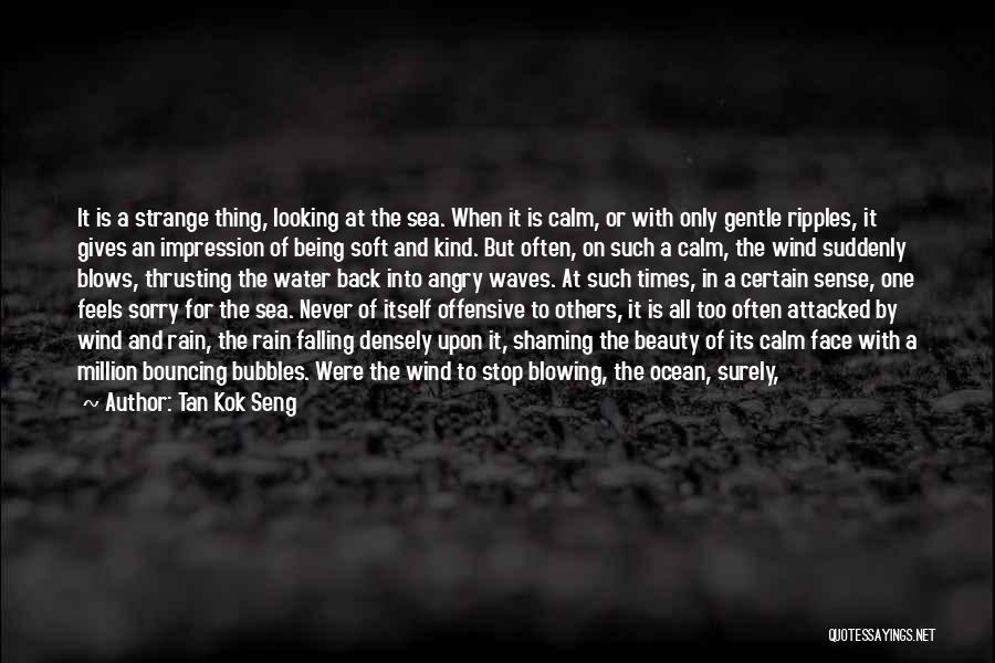 Rain In The Face Quotes By Tan Kok Seng