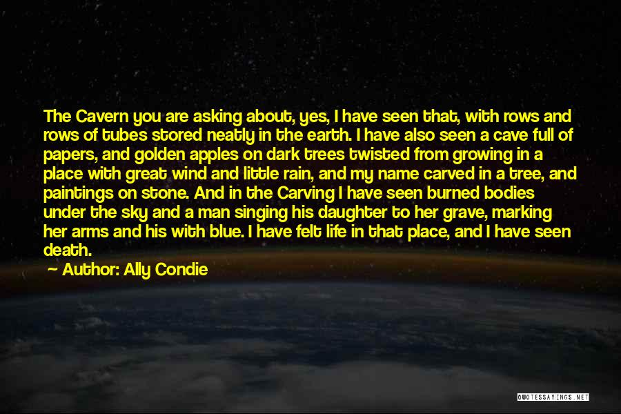 Rain Tree Quotes By Ally Condie