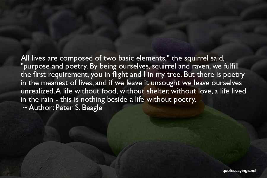 Rain Tree Quotes By Peter S. Beagle
