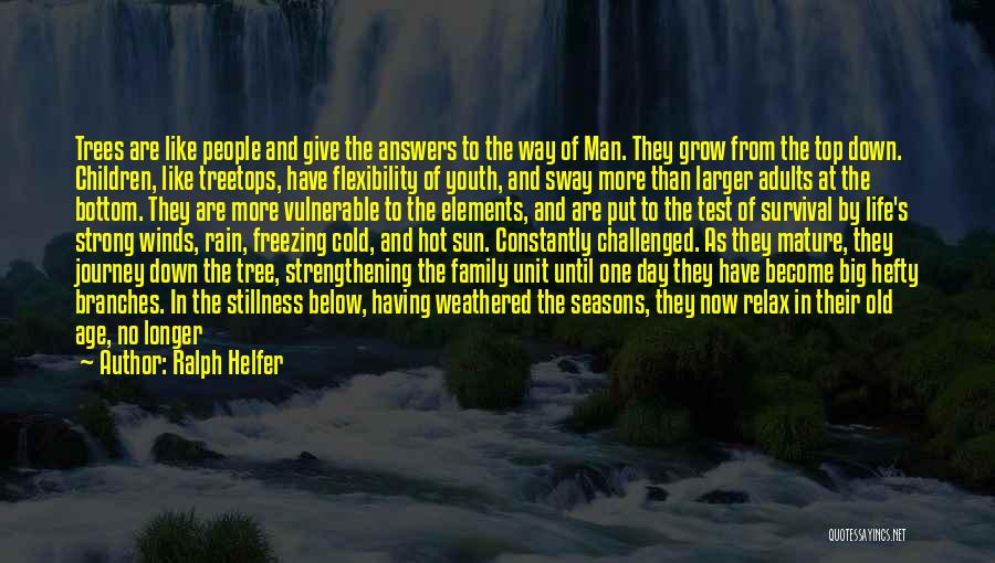 Rain Tree Quotes By Ralph Helfer