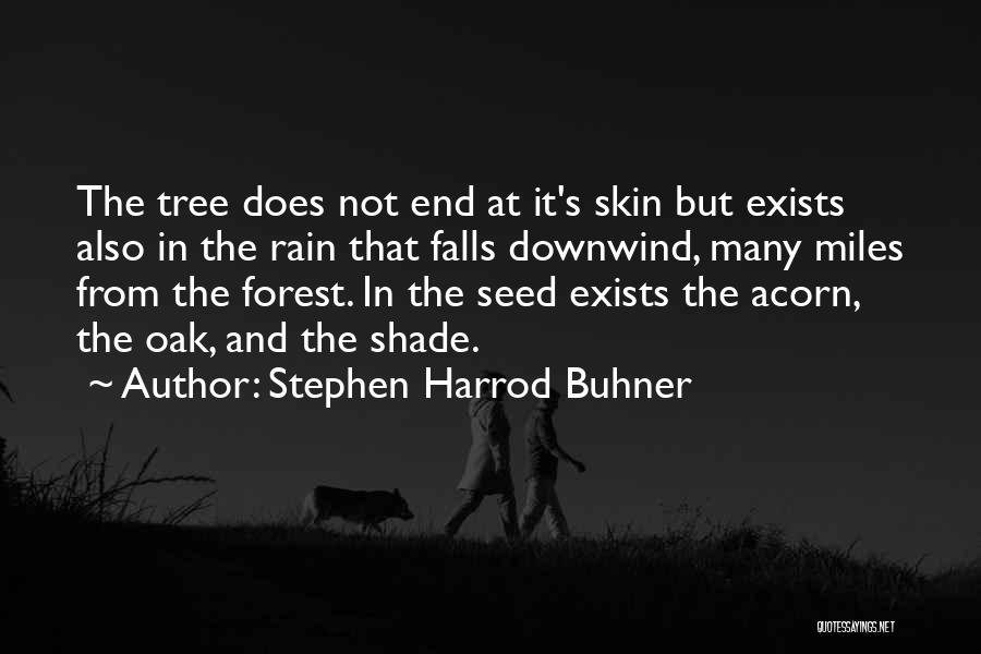 Rain Tree Quotes By Stephen Harrod Buhner