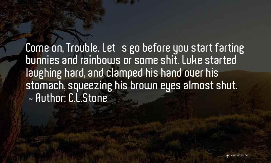 Rainbows Quotes By C.L.Stone
