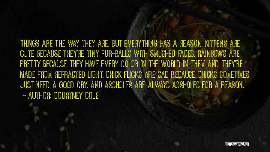 Rainbows Quotes By Courtney Cole