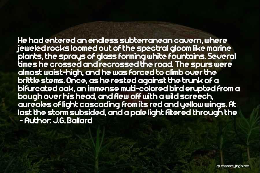 Rainbows Quotes By J.G. Ballard